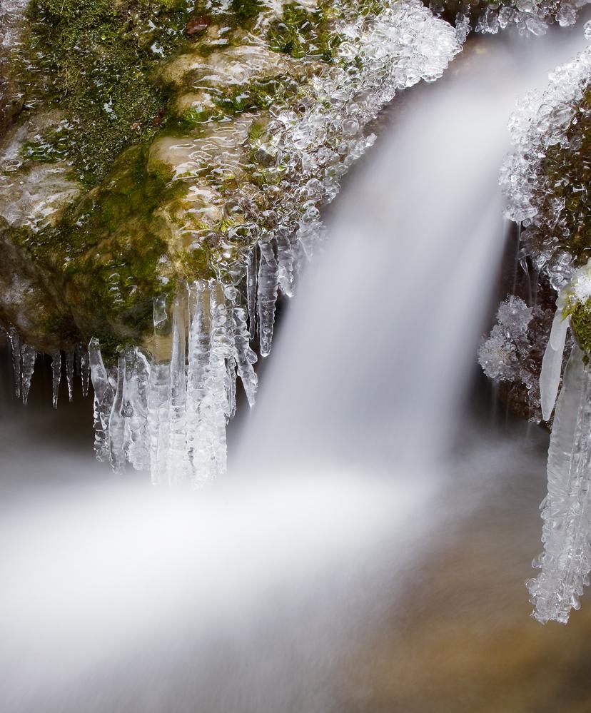 Swiss Ice