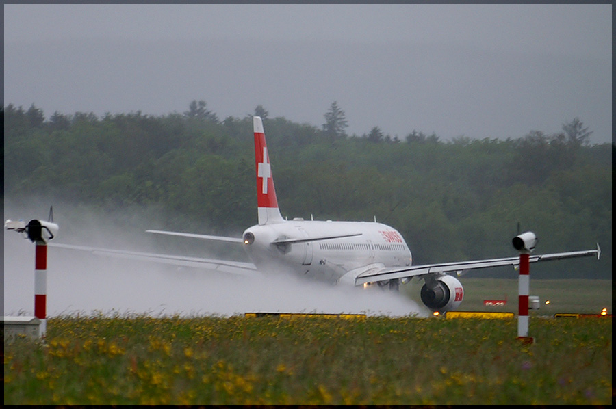 Swiss im Regen 2