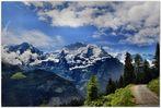 Swiss ll
