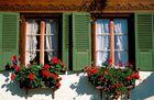 Swiss Window
