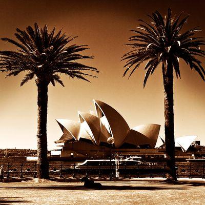 - Sydney Oper -