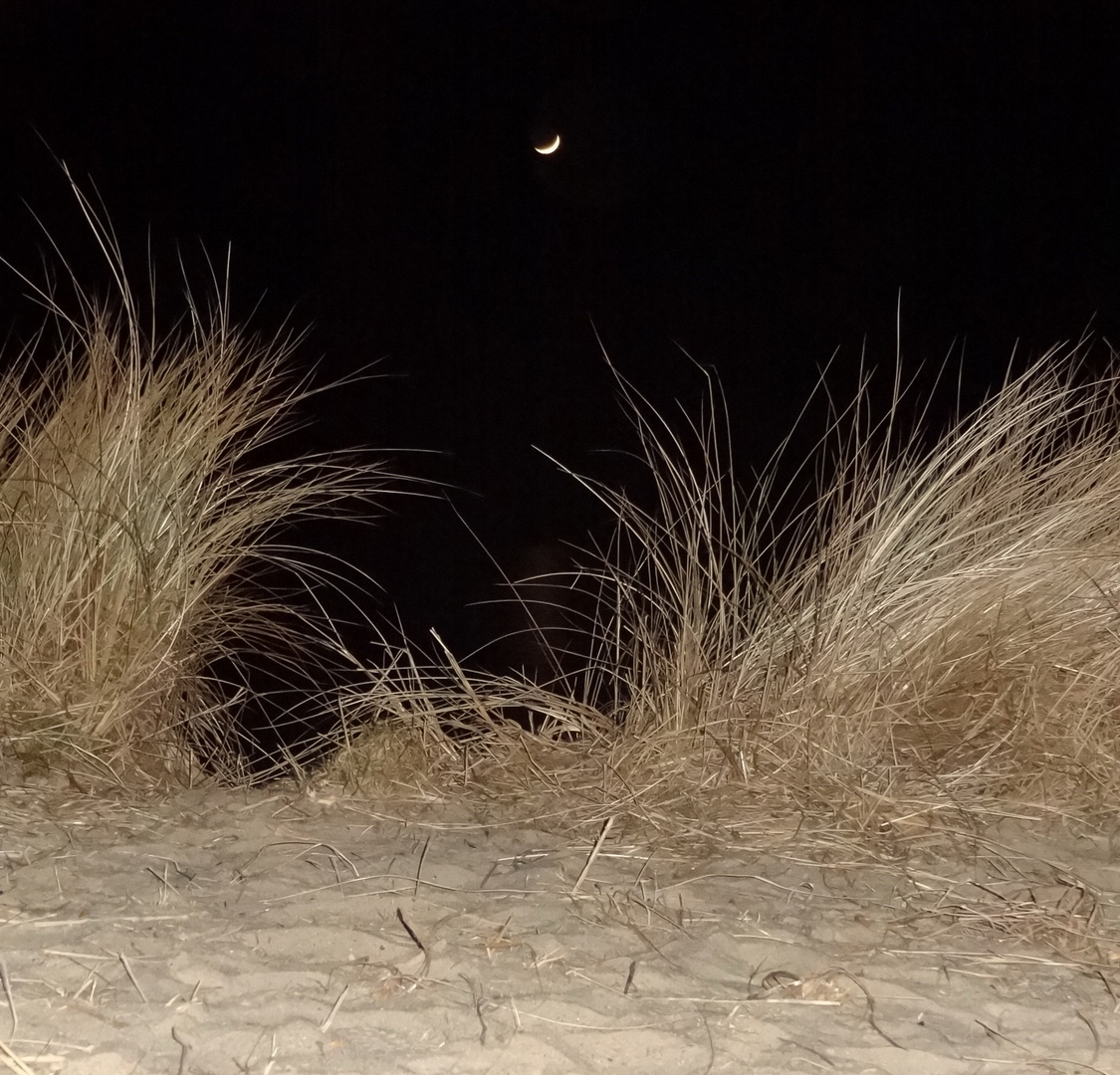 Sylt bei Nacht