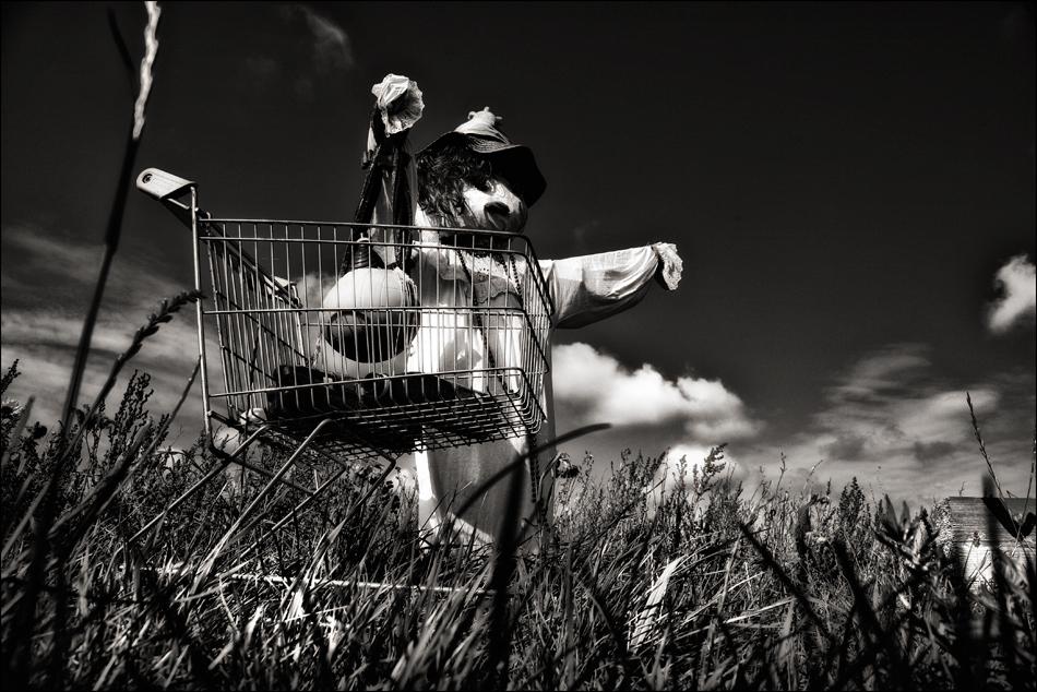 SYLT - Der Einkauf