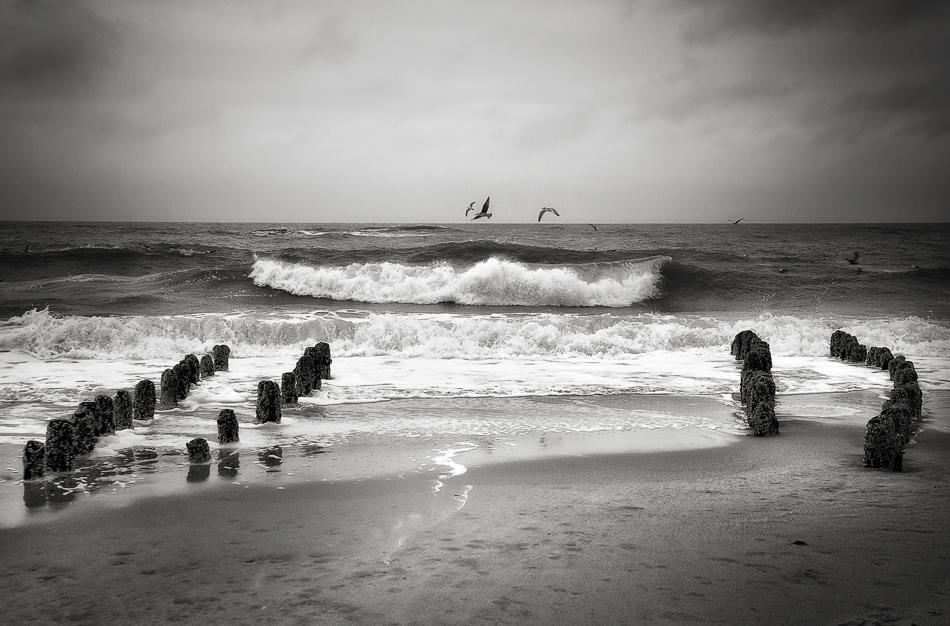 SYLT - Die Welle