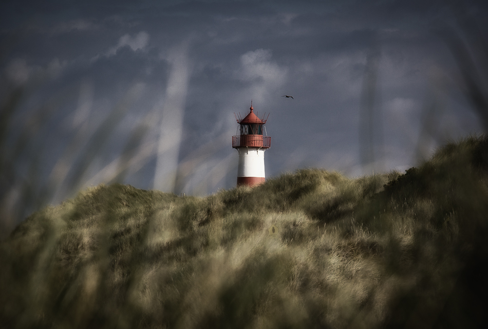 SYLT - Herbstwind