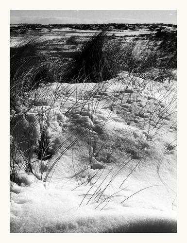 sylt im schnee