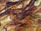 Sylt | Morsum-Kliff II