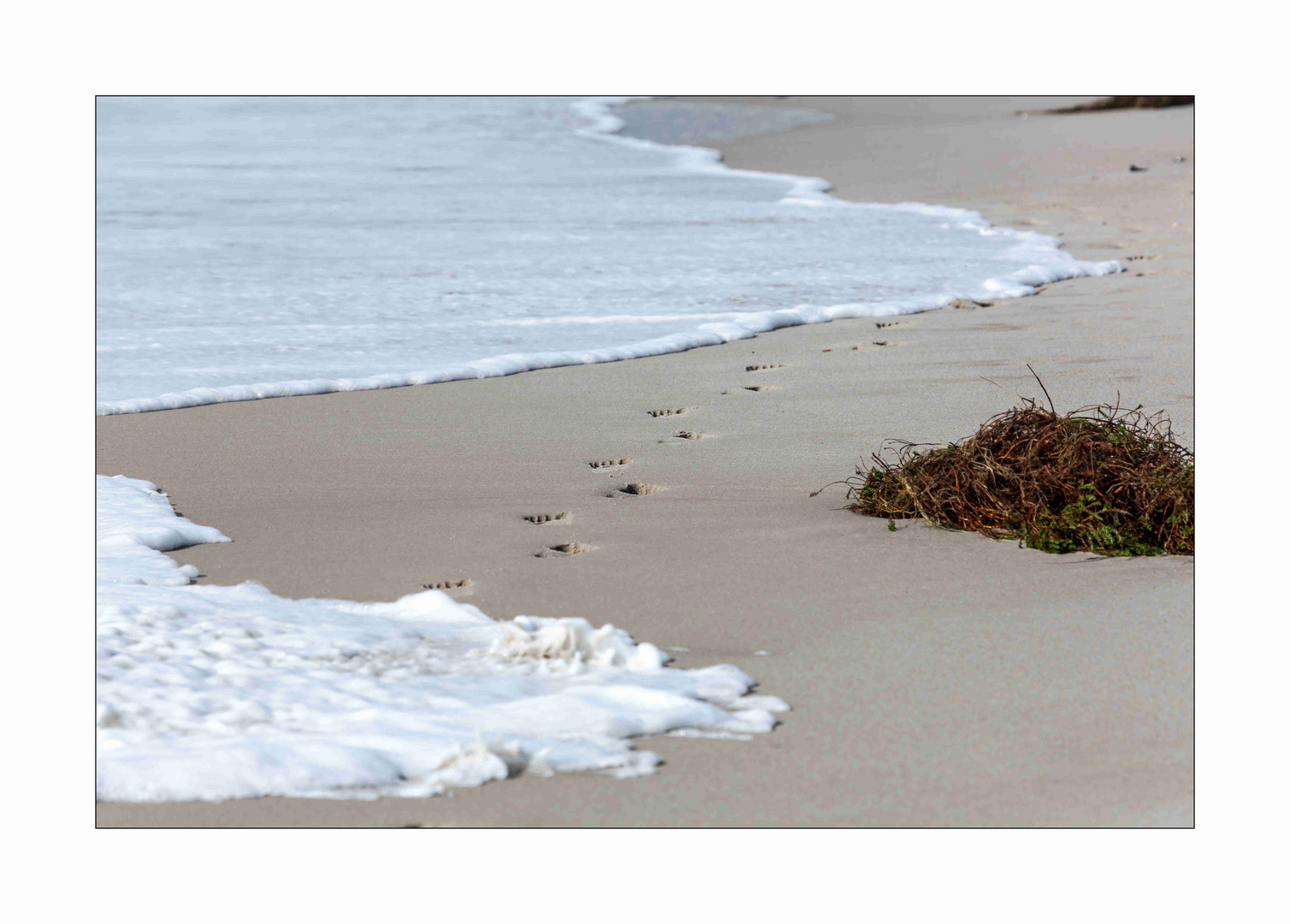 Sylt, - Spuren im Sand... und die Welle...
