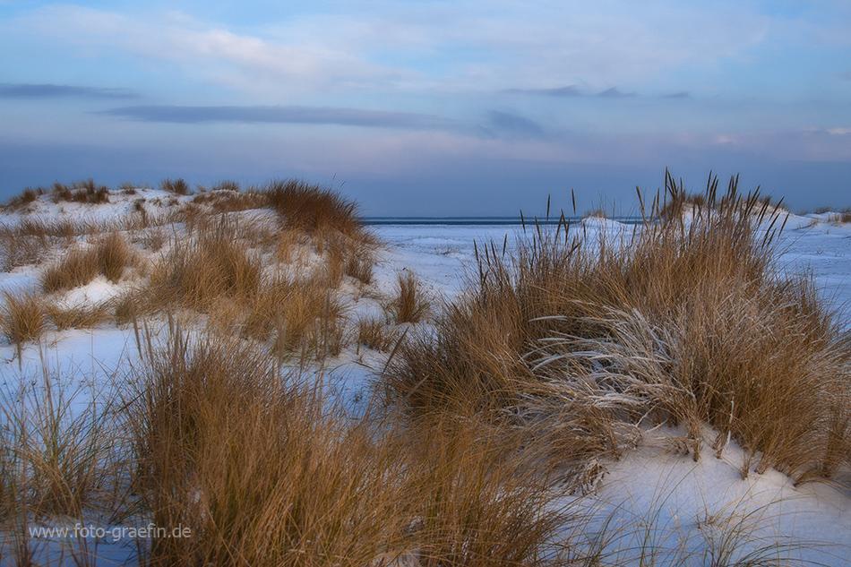 SYLT - Winterlandschaft
