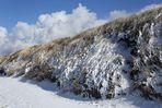 Sylter Schneelandschaft 01
