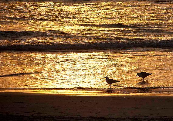 Sylter Strand am Abend