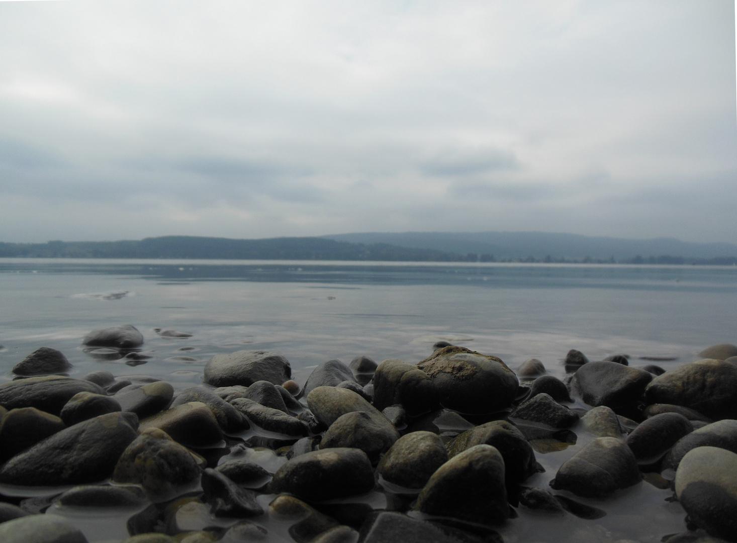 Symbiose - Wasser und Stein (Mettnau, Bodensee)