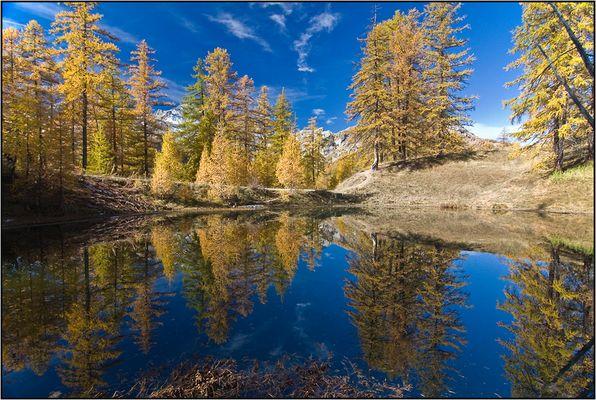 Symétrie d'automne