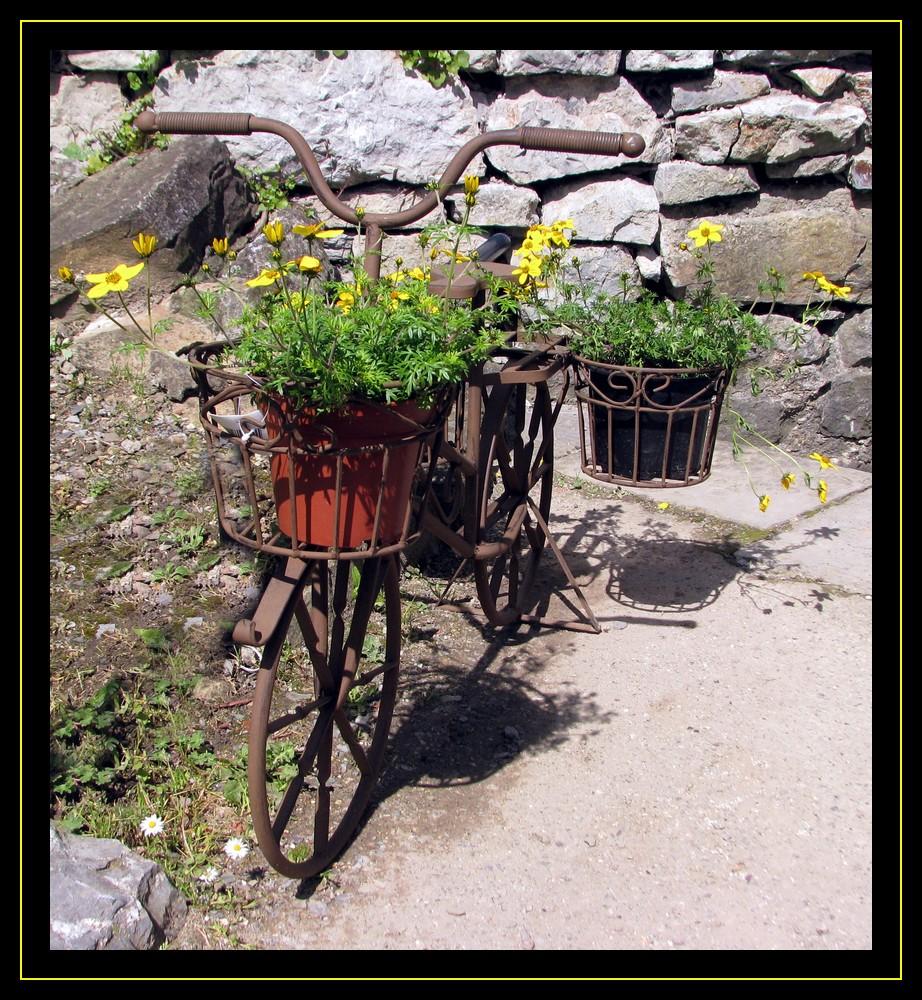 sympathique vélo