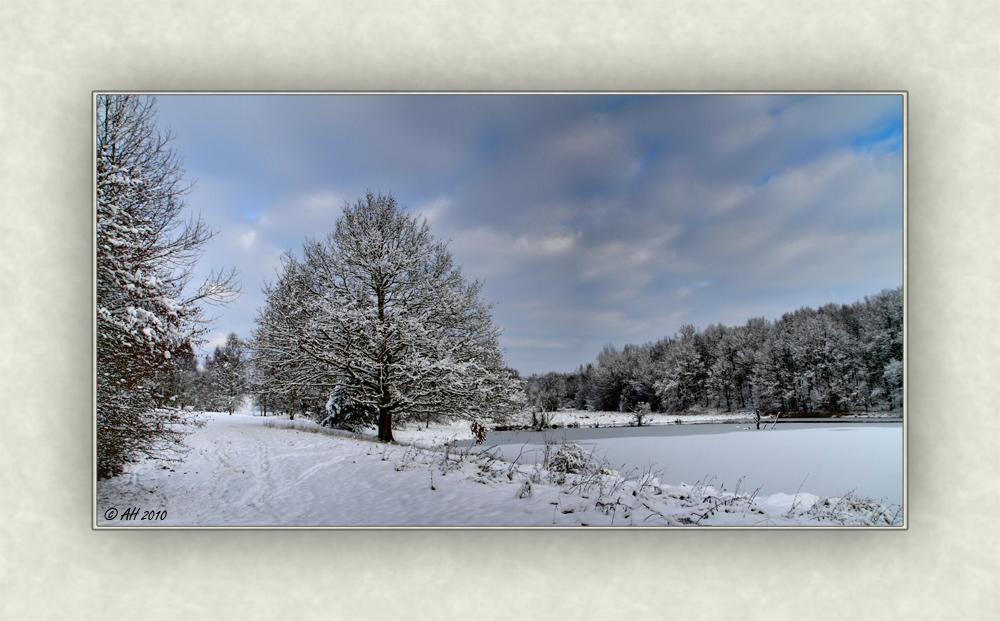 Syrauer Heide - Winterimpression 1
