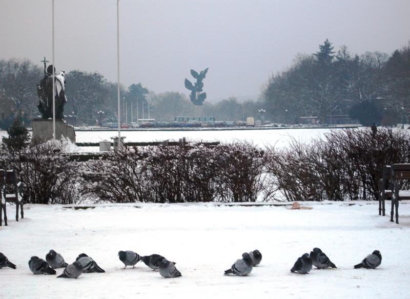 Szczecin in winter