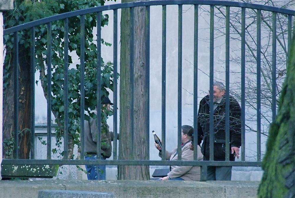 Szenen einer Kleinstadt***Im Stadtpark (3)***zwischen alten Grabmalen