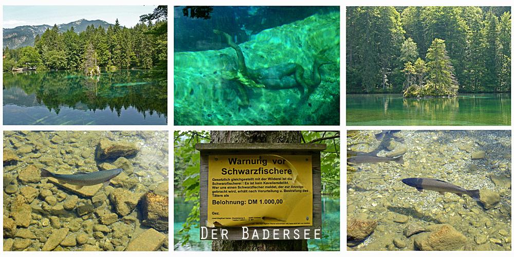 Szenen vom Badersee