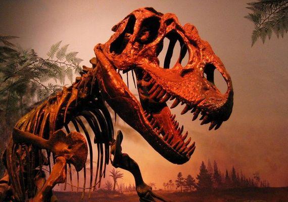 T-Rex (R.O.M., Toronto)