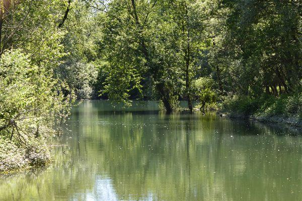 T. River