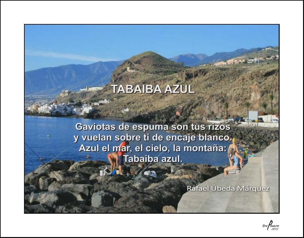 Tabaiba azul