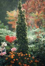 Tableau d'automne !