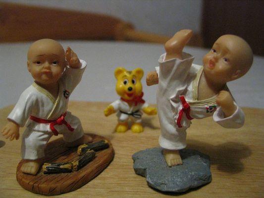 Tae Kwon Do - Kampfkunst auf höchster Ebene