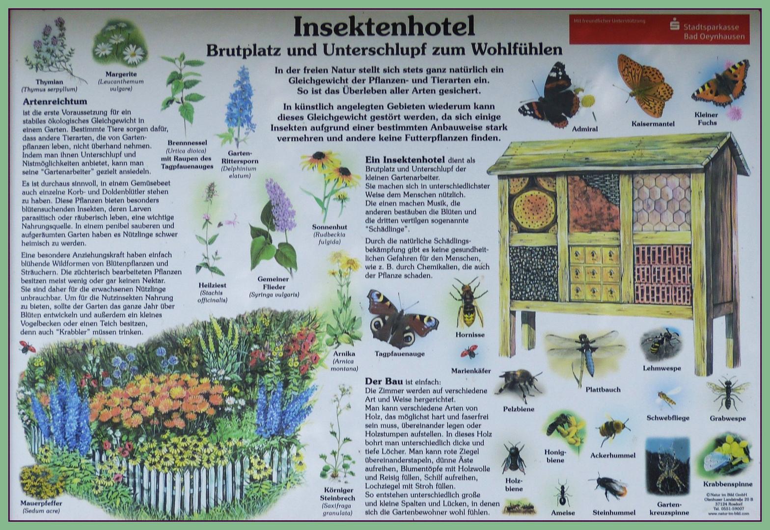 Tafel Naturschutz-am Schloß Ovelgönne