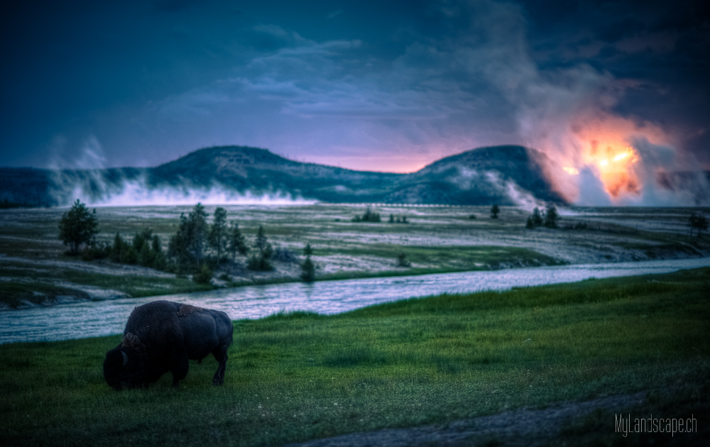 Tag 26: Yellowstone Nationalpark (Madison)