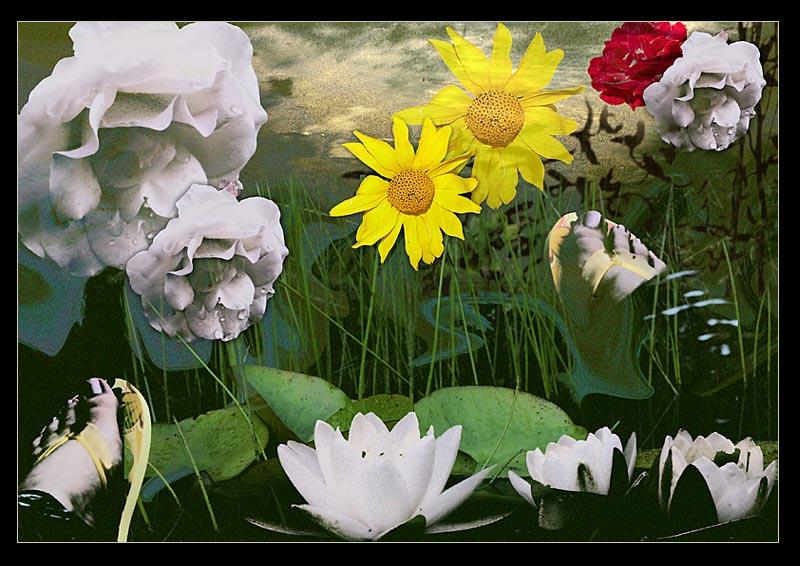 Tag am Teich