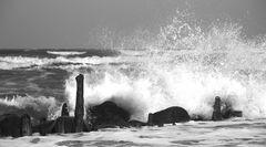 Tage am Meer (1)