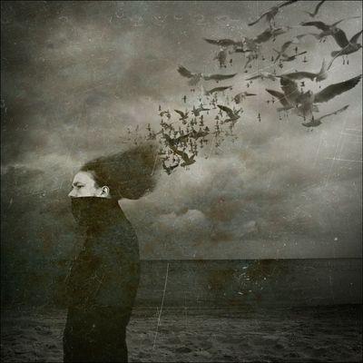 Tage sind es, die die verschwommenen Reminiszenzen der Träume vertreiben