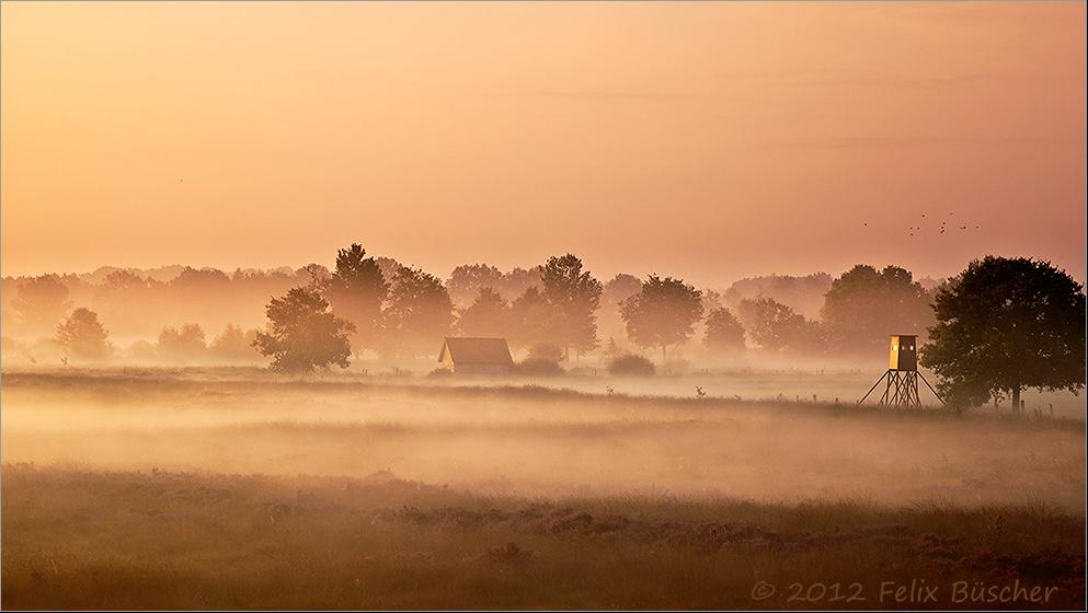 Tagesanbruch im Recker Moor (3)