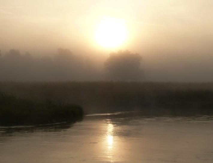 Tagesblick