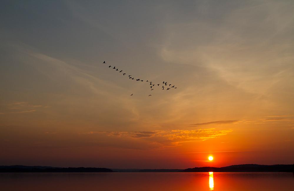 Tageserwachen.. von Conny Wermke