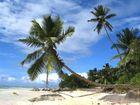 Tagestrip auf die Seychellen