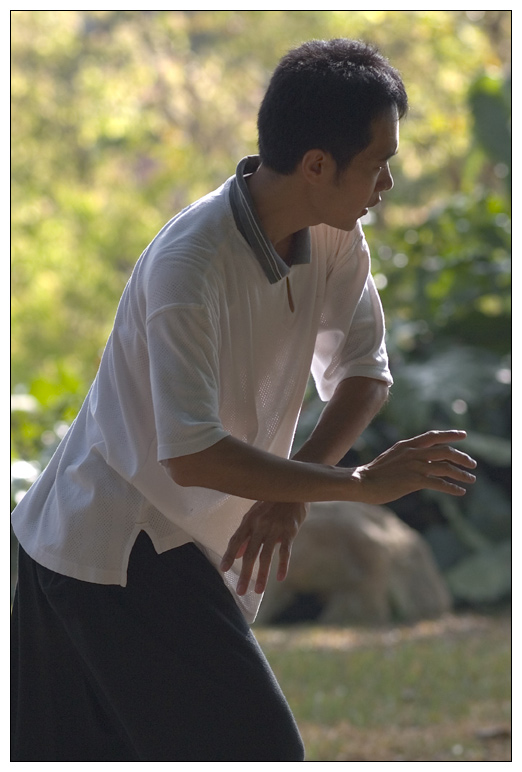 Tai Chi in Fort Canning Park