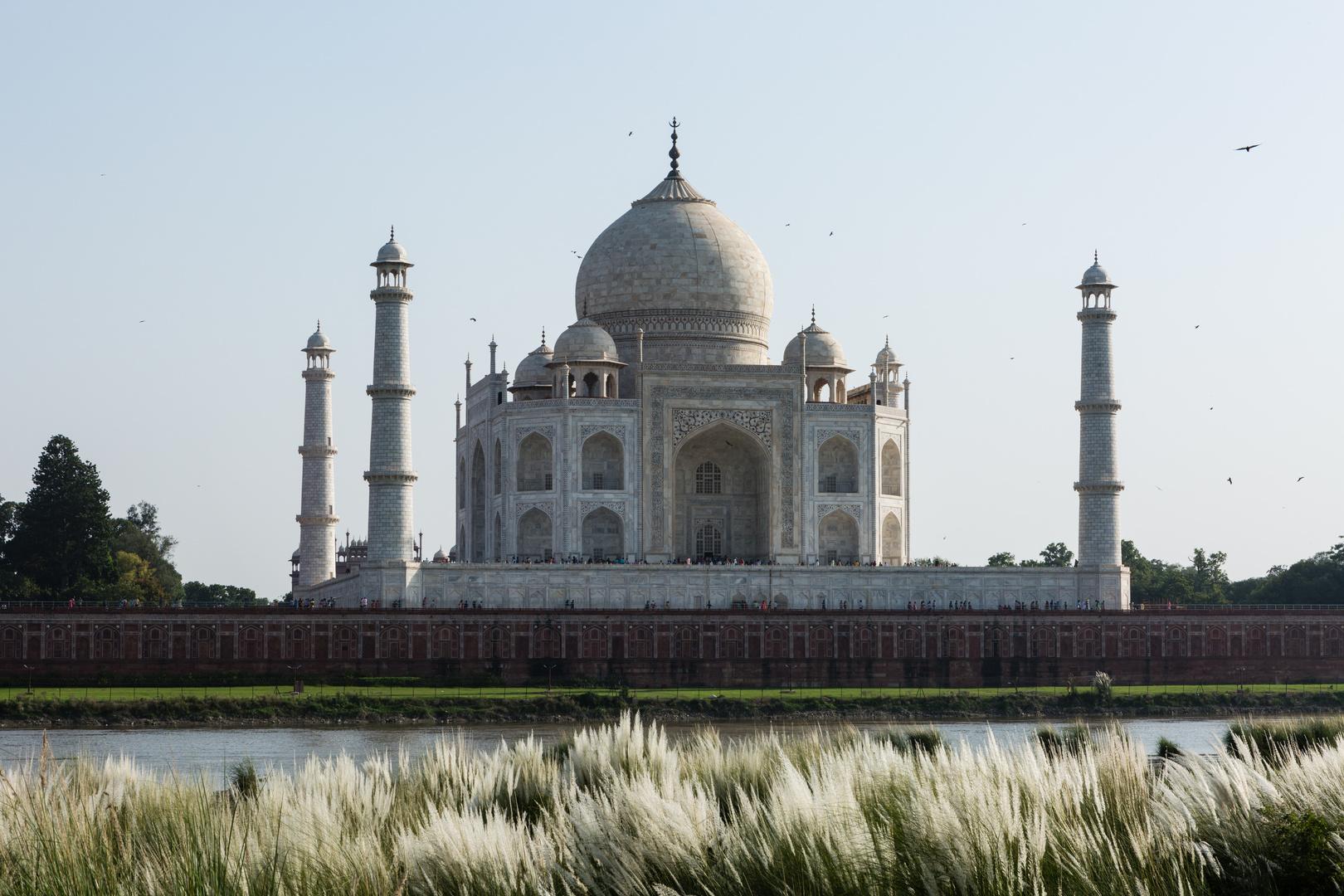 Taj Mahal im Abendlicht (2)