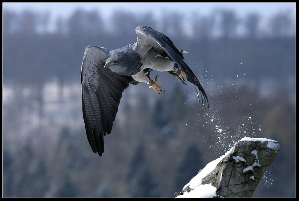 Take off (I)