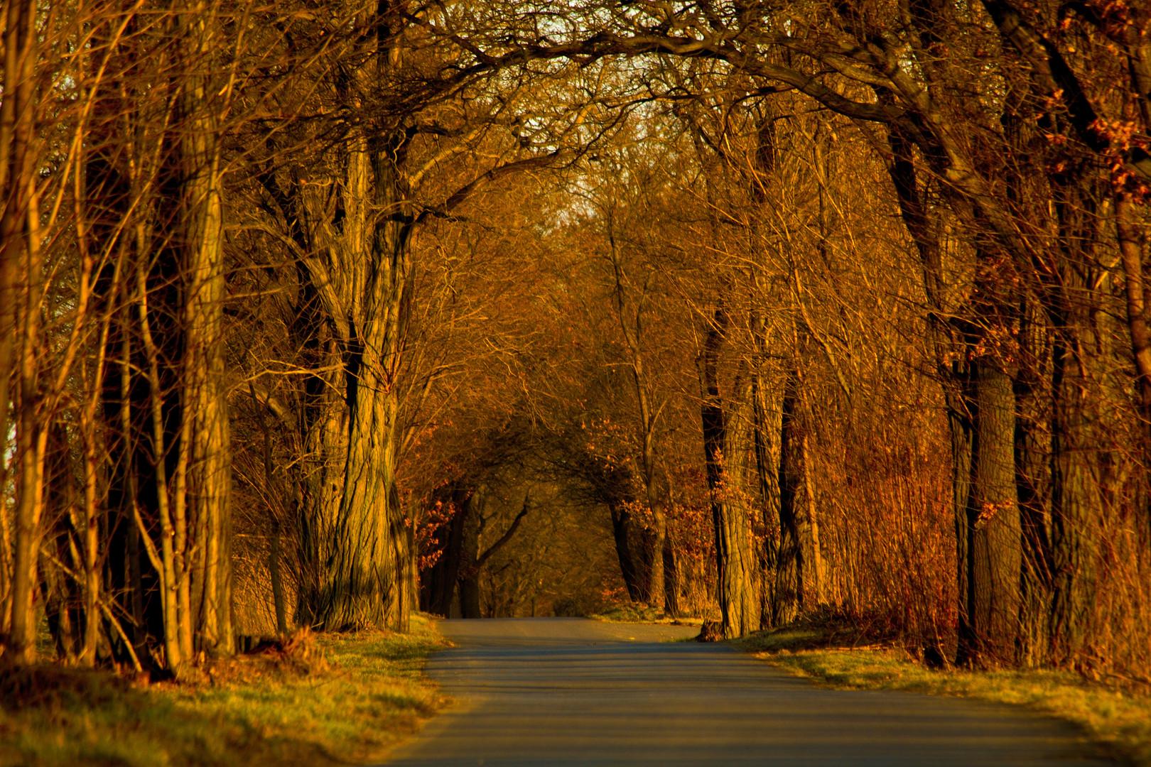 Take the long way ....