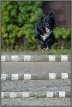 Takki beim S-Springen :)
