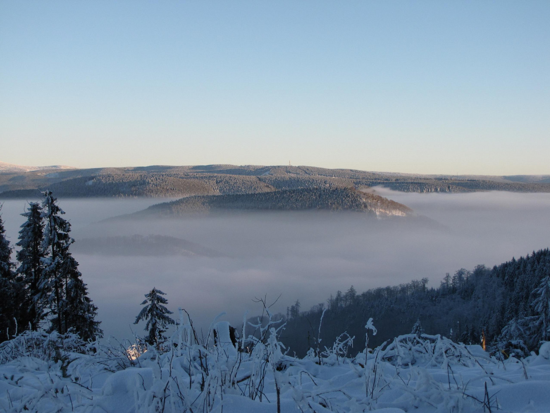 Talnebel im Harz 4