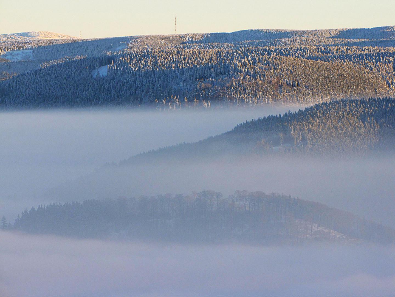 Talnebel im Harz 5