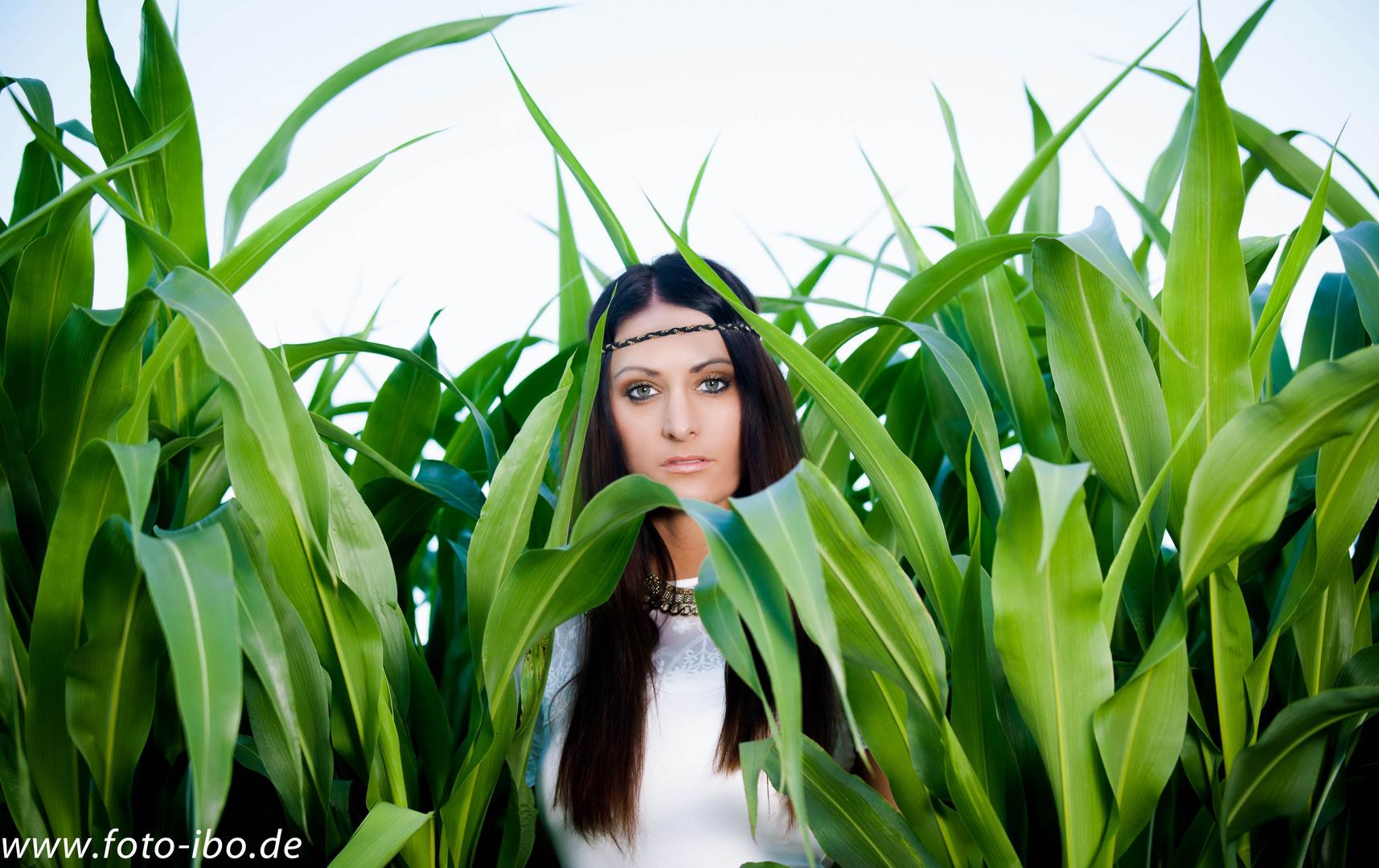 :Tamara im Maisfeld