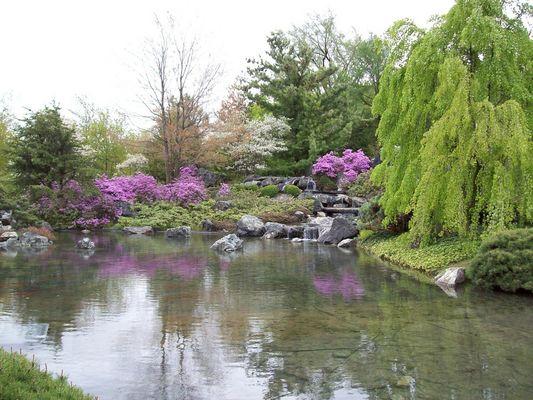 Étang au Jardin japonais
