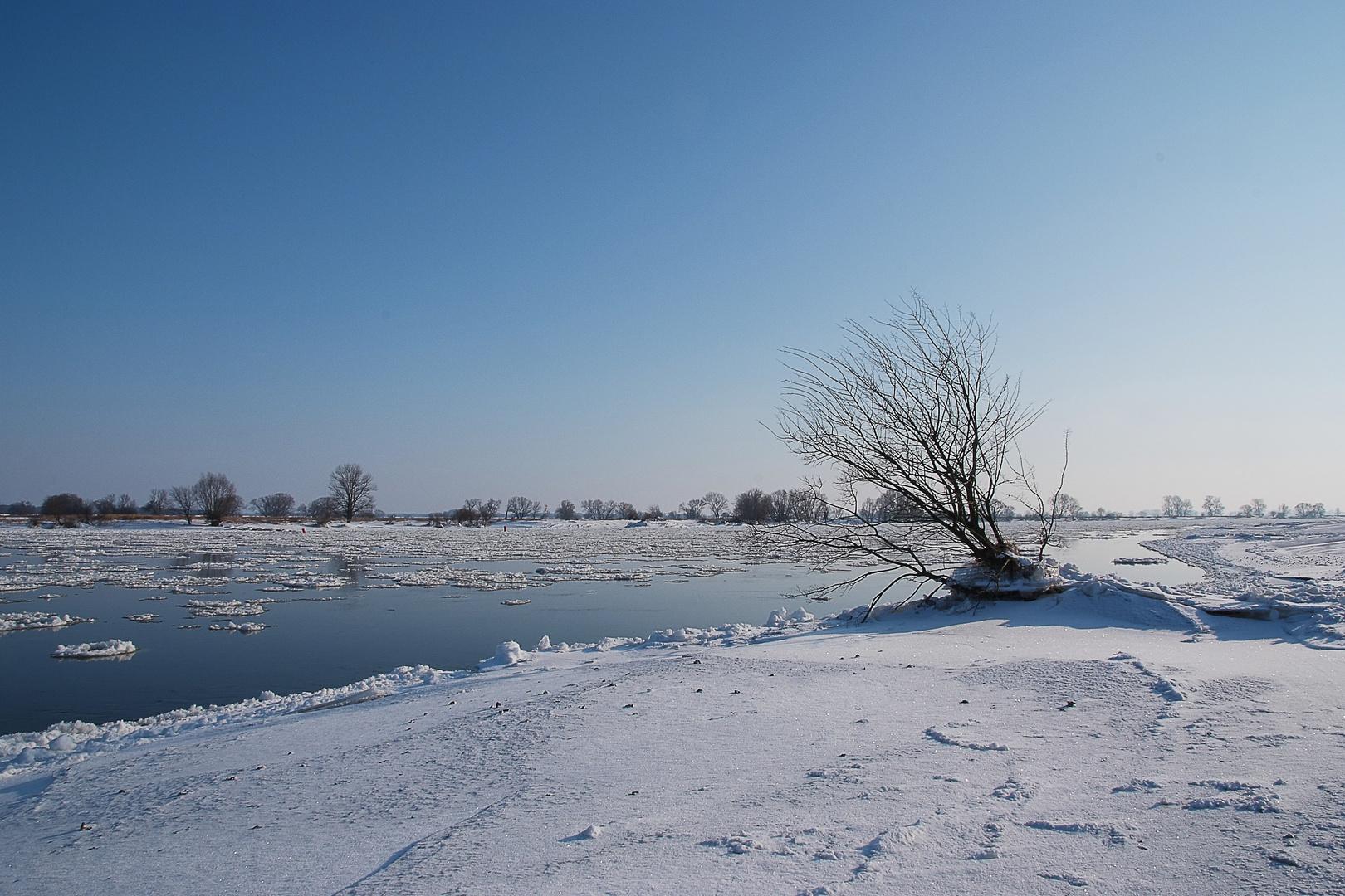 Tangermünde - vereiste Elbe
