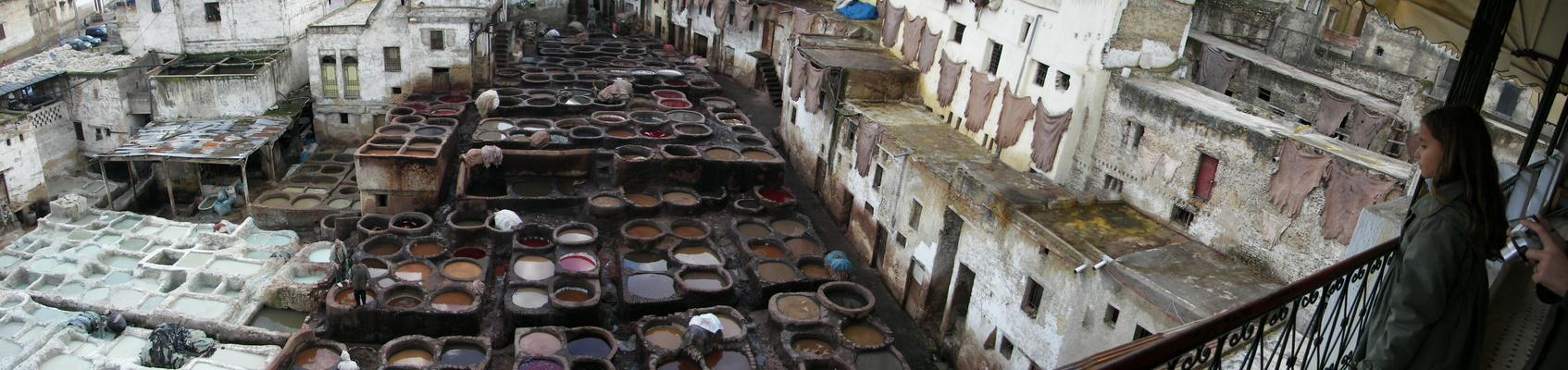 Tannerie de Fes, Maroc