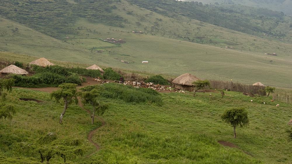 Tansania - Massaidorf