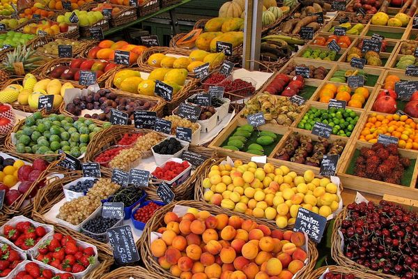 tant de fruit au choix