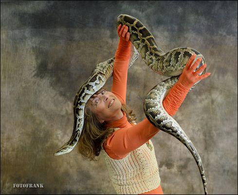 Tanz mit der Python